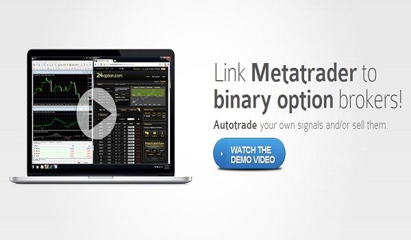 binary options signals365 scamadviser bbbbvgg