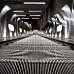 Schritte zum Erfolg mit binären Optionen