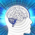 Psychologie bei Trading und Erfolg